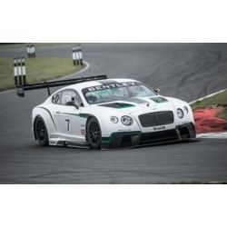 Bentley Continental GT3 7 2013 Gulf 12 Hours Truescale TSM141830R