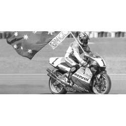 Honda NSR 500 GP 500 1995 Mick Doohan Minichamps 122951001