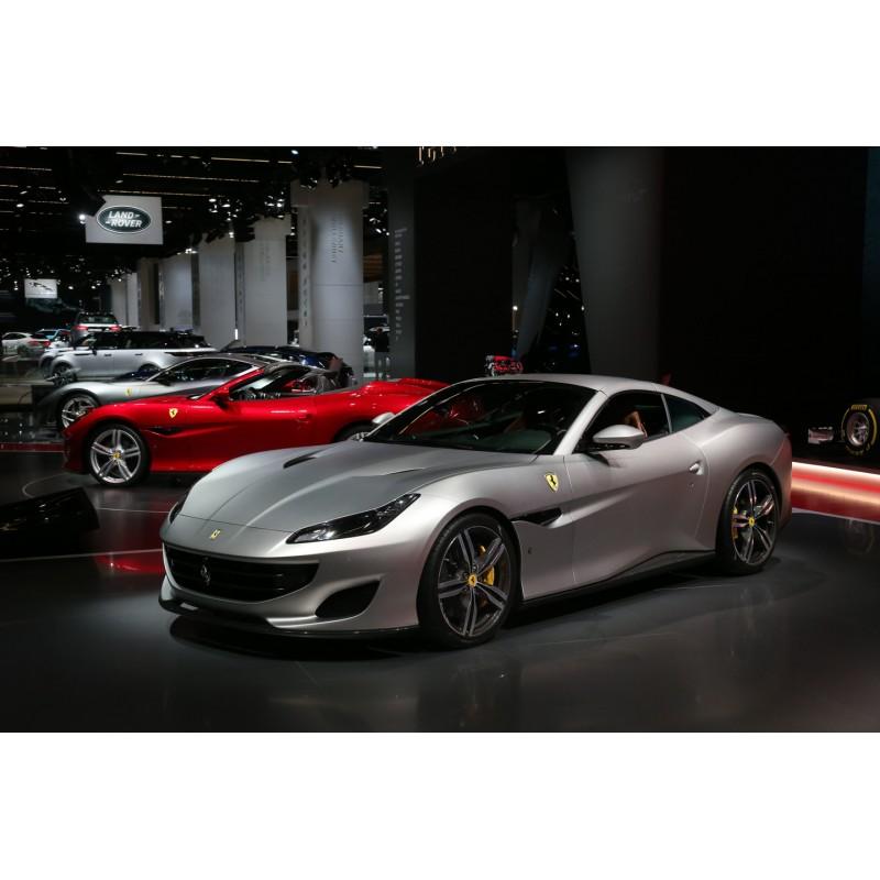 Ferrari Portofino: Ferrari Portofino Closed Roof Matt Alluminium 2017 BBR