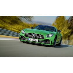 Mercedes AMG GTR Green 2017 Almost Real ALM820706