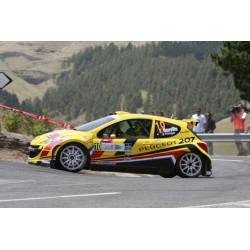 Peugeot 207 S2000 5 Tour de Corse 2011 Neuville Gilsoul Sunstar SUN5440