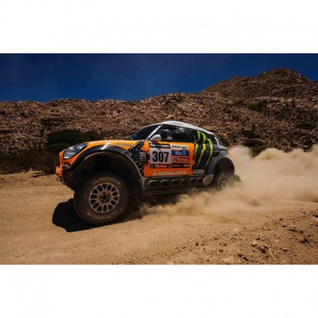 Mini All 4 Racing 307 Rallye Dakar 2013 Novitskly Zhiltsov IXO RAM575P