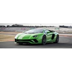 Lamborghini Aventador Aftermarket Verde Ithaca Looksmart LS492D