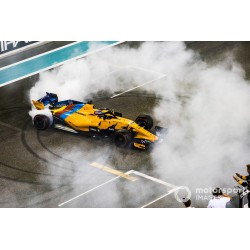 McLaren Renault MCL33 14 F1 Abu Dhabi 2018 Last Race Fernando Alonso Spark S6069