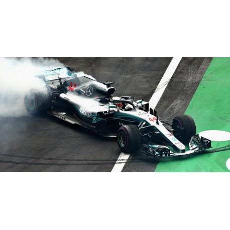 Mercedes F1 W09 EQ Power+ F1 World Champion Mexique 2018 Lewis Hamilton Minichamps 417181944